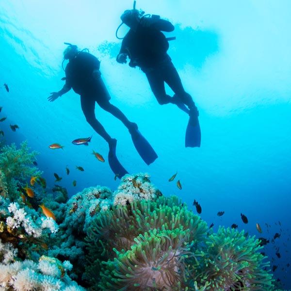 Phi Phi Relax Beach Resort: Activities In Phuket For Guests At Friendship Beach Rawai